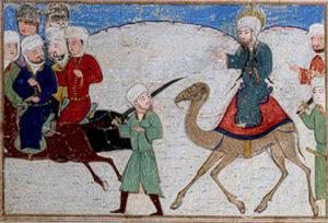 costituzione di medina