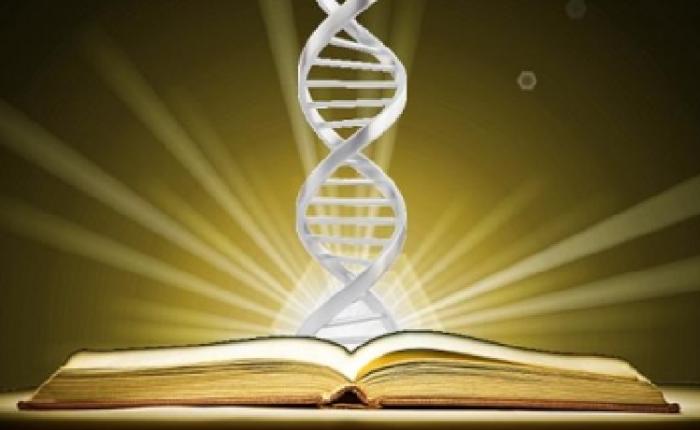 Corano scienza