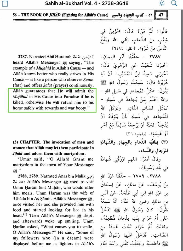 paradiso jihad
