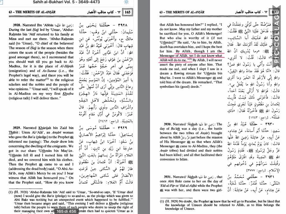 fideismo e incognite nell'islam