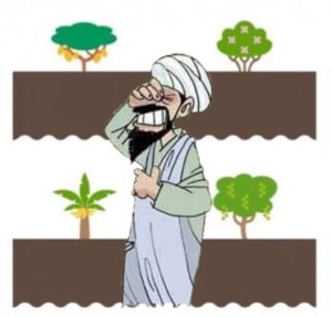 alberi boeri terrorismo